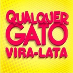 QUALQUER GATO VIRA-LATA